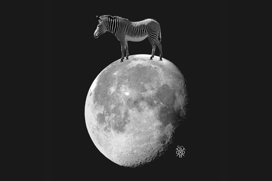 Soho New York: Zebra Moon